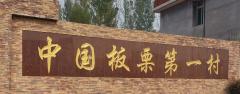 中国板栗第一村